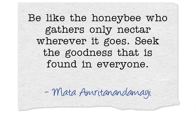 Be-like-the-honeybee-who.jpg