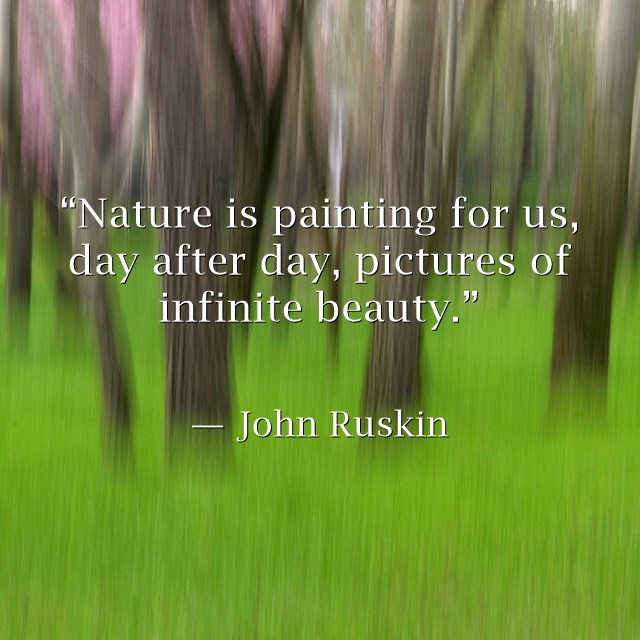 Nature-is-painting-for.jpg