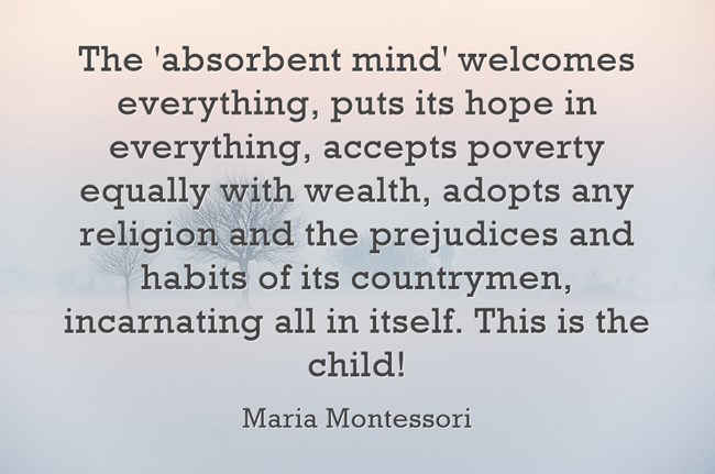 the spiritual embryo absorbent mind and The absorbent mind absorbs everything without differentiating whatever it comes in contact with the child absorbs the language and other minute aspects of thus spiritual embryo is an embodiment of powers these powers help the child to achieve independence and develop into an adult.