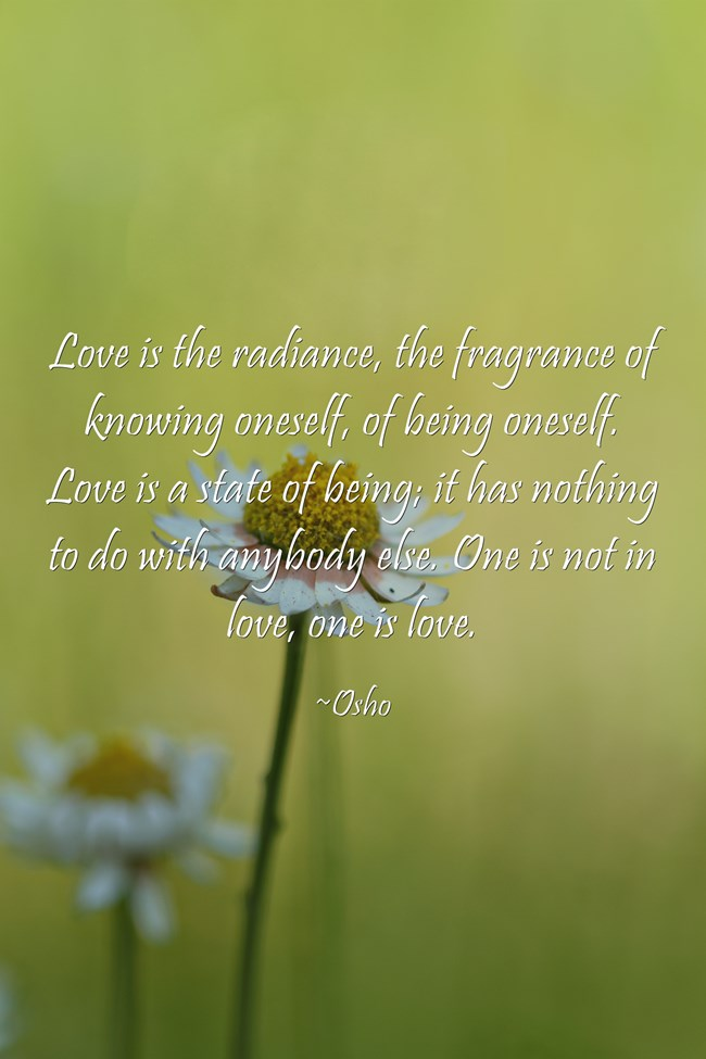 Love-is-the-radiance-the.jpg