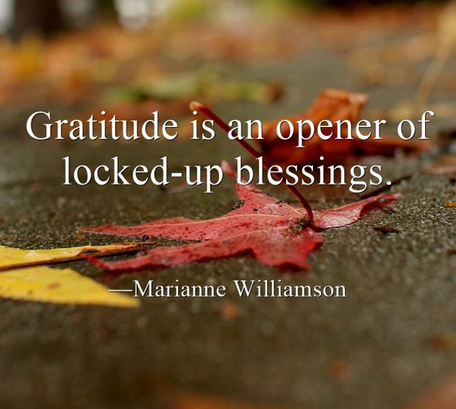 Gratitude-is-an-opener.jpg
