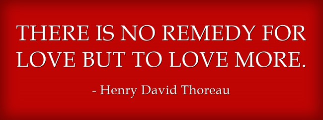 there-is-no-remedy-for-love-but-to-love-more.jpg